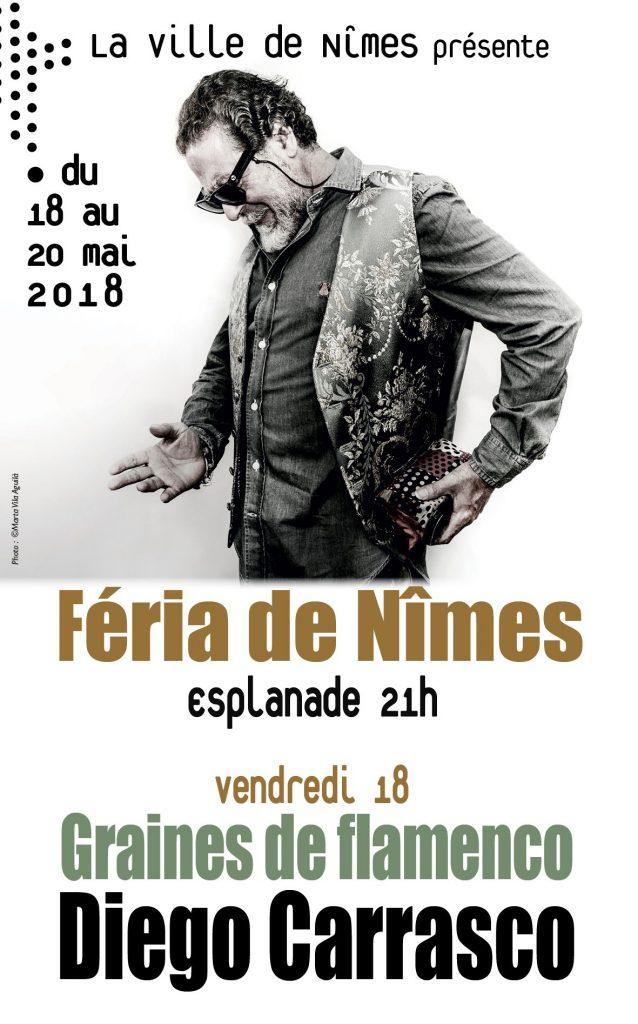 Diego Carrasco - NIMES
